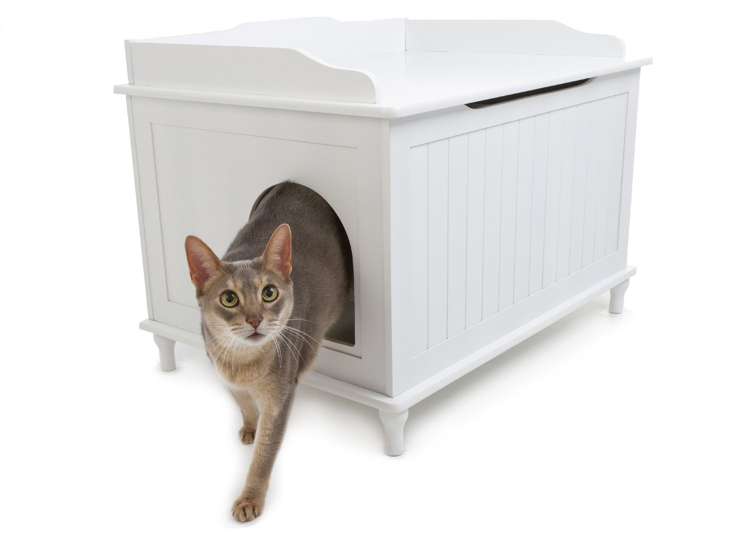 awesome dog proof litter box options. Black Bedroom Furniture Sets. Home Design Ideas