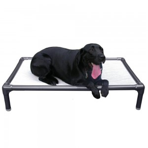 Kuranda Dog Bed/Cot