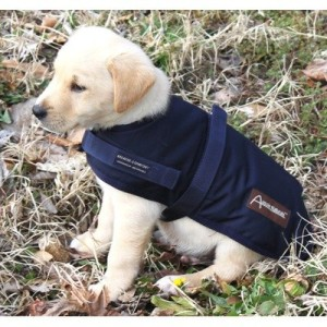 Waterproof Dog Jackets