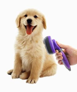 Best Dog Brush